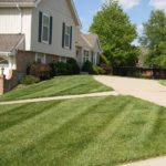 akron oh weed control service, north canton ohio weed control service, copley oh weed control service, richfield ohio weed control service, hudson ohio weed control service