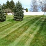 lawn care, fertilization company, green grass, green ohio, 44685, green oh, uniontown oh, uniontown ohio, lawn care company, weed control company, north canton ohio