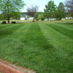 Akron Canton Lawn Care, lawn aeration, core aeration, lawn core aeration, overseeding, over seeding, aerating, aerated, new seed, stow oh, hudson oh, cuyahoga falls oh