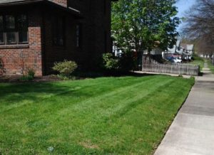 Superieur The Exterior Of Your Property Is An Important Part Of Your Home Or Business  In The Firestone Park, OH Area. When You Hire Lawn Care Service From Akron  ...