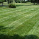 Akron Canton Lawn Care Services