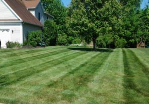 Akron Canton Lawn Care Has Helped Clients Establish Lawns And Landscapes To  Be Proud Of. We Combine Great Customer Service With Our Commitment To  Quality To ...