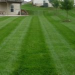 springfield township oh turf care, springfield township ohio lawn care, springfield township ohio lawn aeration, springfield township ohio overseeding, over seeding, grass seed