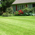 akron ohio lawn treatments, north canton ohio lawn treatments, hudson ohio lawn treatments, cuyahoga falls ohio lawn treatments, richfield ohio lawn treatments, overseed