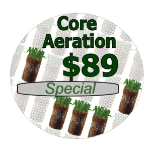 lawn aeration, core aeration, turf aeration, lawn aerating, turf aerating, core aerating, lawn, lawns, ohio, akron oh, overseed, overseeding, grass, turf, plugs, soil, cores, lawn caere