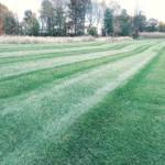 lawn care, lawn services, akron canton ohio lawn care, fertilizer applications, turf applications, core aeration, lawn aeration, turf aeration, overseeding