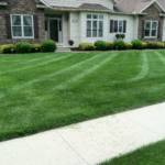 lawn care, lawn service, lawn care company, lawn care treatments, weed control, fertilizer services